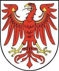 Jagdzeiten und Schonzeiten in Brandenburg
