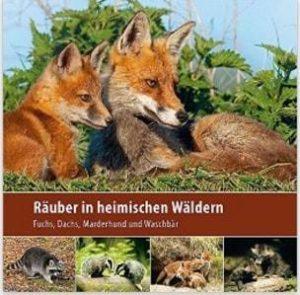 7e6401a7cacfc7 Räuber in heimischen Wäldern  Fuchs