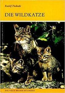 Buchtipp Wildkatze