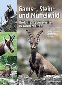 Gams-Stein und Muffelwild Biologie Lebensweise Besonderheiten