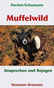 Muffelwild Ansprechen und Bejagen-min