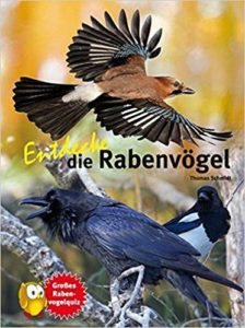 Entdecke die Rabenvögel