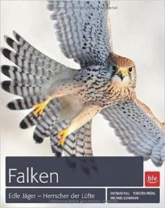 Falken Buchtipp